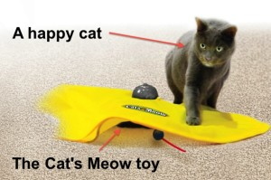 Get Your Paws on a Slice of The £100 Million UK Pet Toy Market