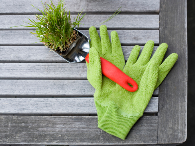 Why you should go niche when sourcing gardening books