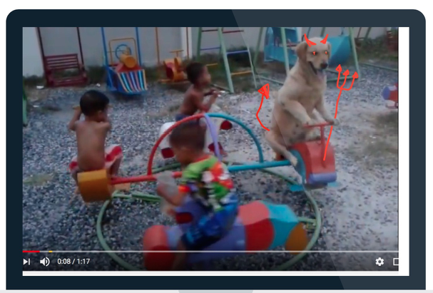 Why all 'funny' dog videos should be BANNED!