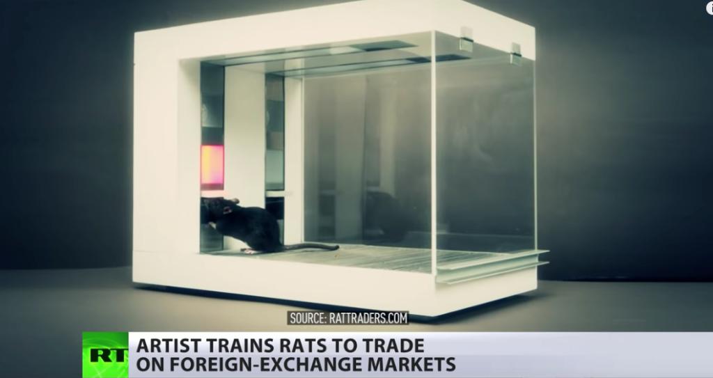 Electric shock treatment creates 'super-strain' trader